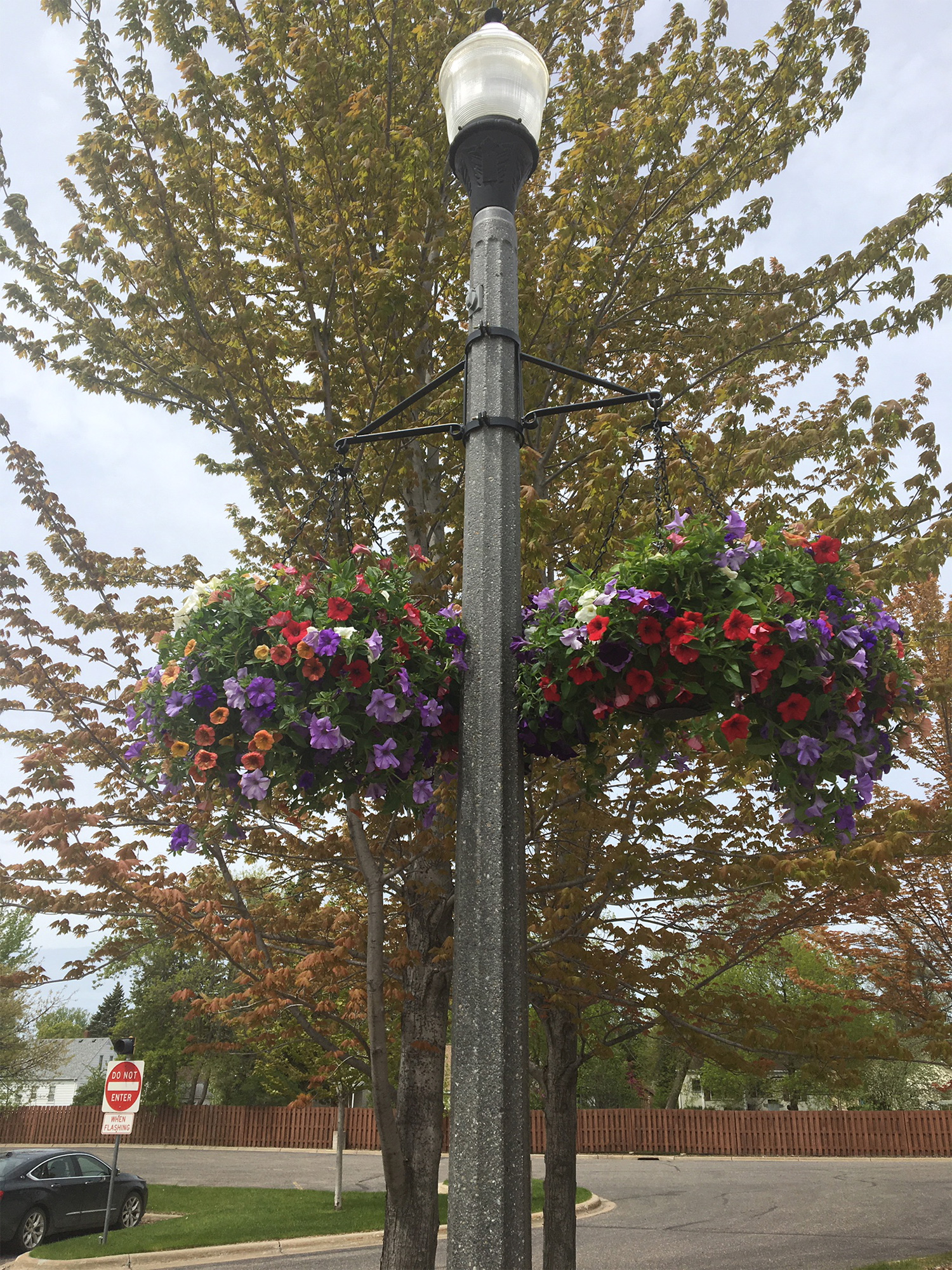 Summer Flower Baskets